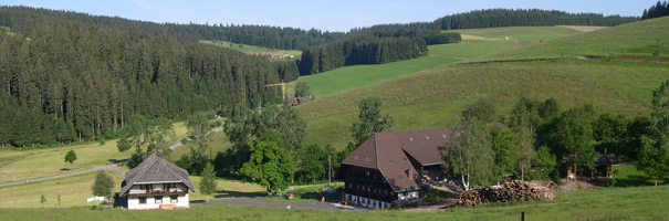 Holydays on the Farm - Konradenhof Titissee-Neustadt